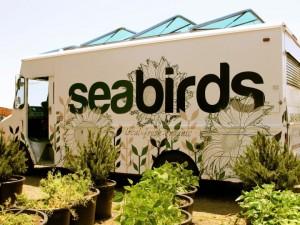 seabirds truck