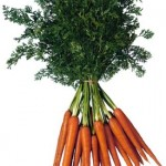 carrot fun facts