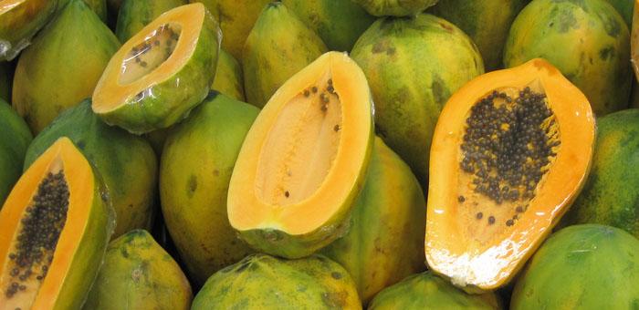 papaya fun facts