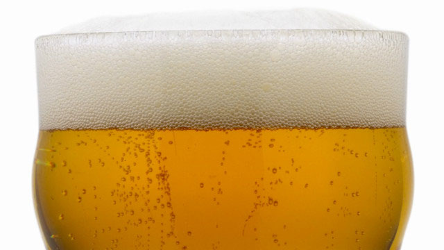 lager fun facts
