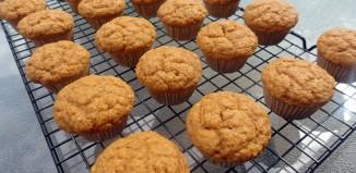 Muffin Fun Facts