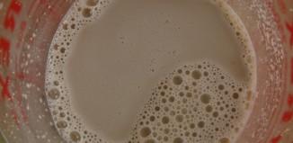 proof yeast