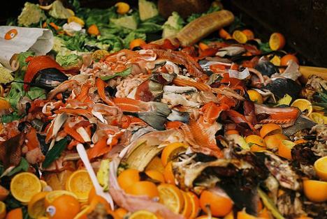 food truck food waste