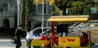 willy dog hot dog cart
