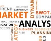 Market Analysis Section