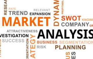 Market Analysis Section