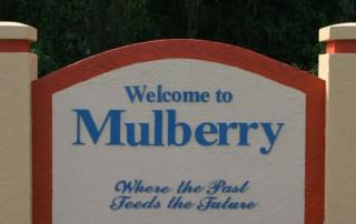 mulberry fl