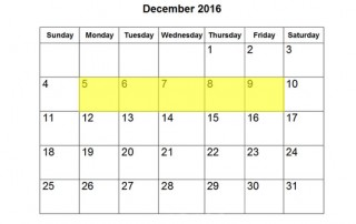 dec-5-9-2016-food-holiday