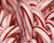 candy cane fun facts
