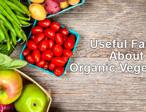 Useful Facts About Organic Vegetables Food Truck Owners Should Know