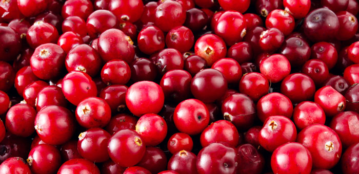 cranberry fun facts