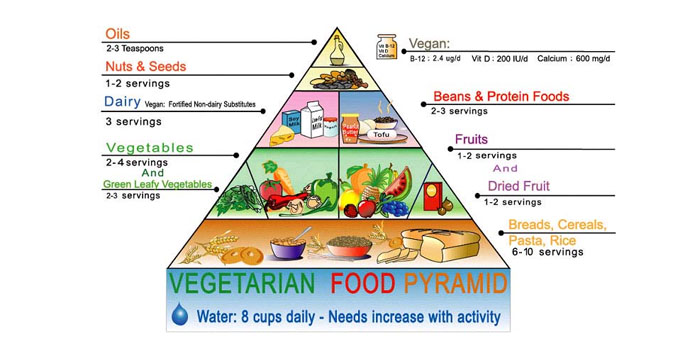 Meatless Monday Basic Vegetarian Food Pyramid Facts