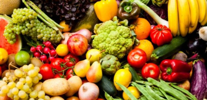 vegetarian lingo