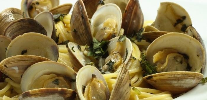 clam fun facts