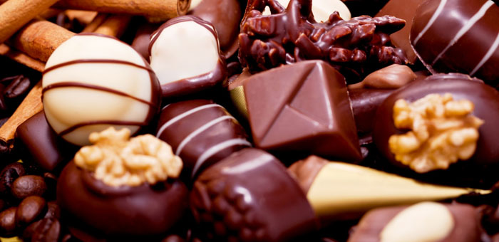how to know if your did is sick from chocolate