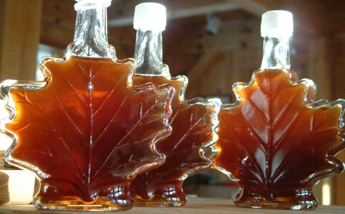 maple syrup fun facts