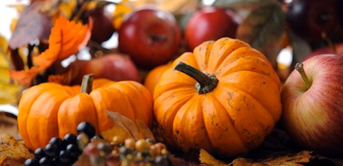 adding pumpkin