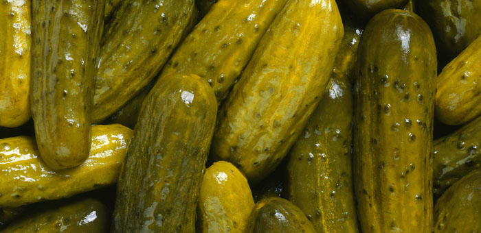 pickle fun facts