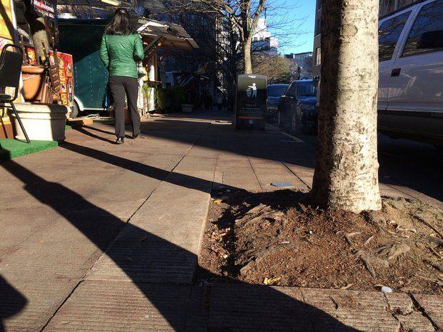 portland sidewalk