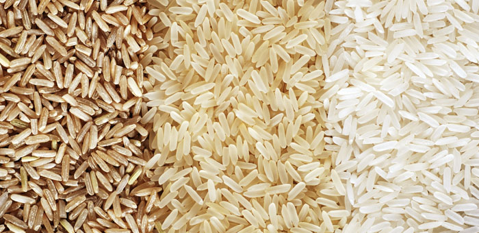 rice fun facts