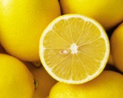lemon fun facts