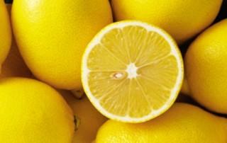 lemon fun facts