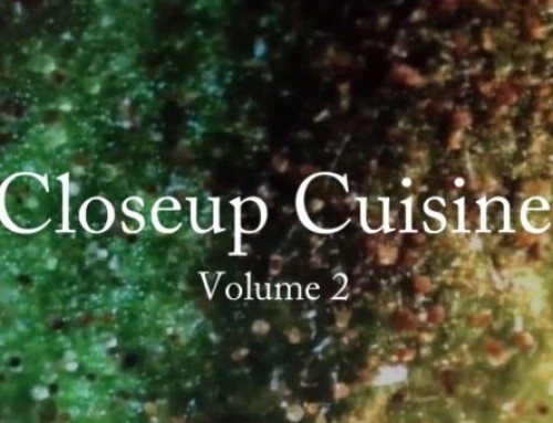 Closeup Cuisine – Volume 2